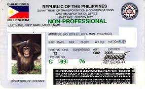 drivers license in the Philippines