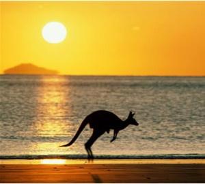 australian Summer